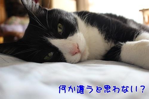 IMG_1807編集②.jpg