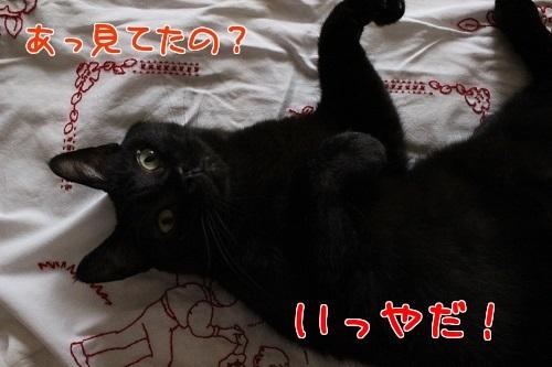 IMG_2051編集②.jpg