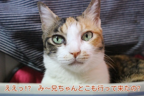 IMG_4564編集②.jpg