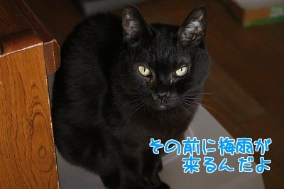 IMG_5225編集②.jpg