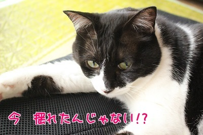 IMG_5264編集②.jpg