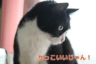 IMG_5667編集②.jpg