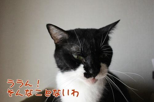IMG_5765編集②.jpg