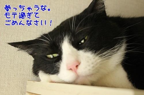 IMG_6062編集②-1.jpg