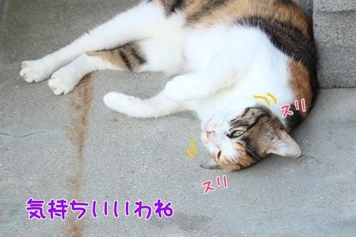 IMG_6663編集②.jpg