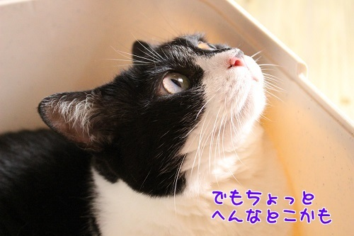 IMG_7093編集②.jpg