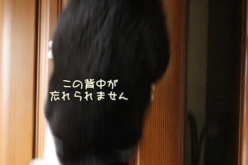 IMG_7141編集②.jpg