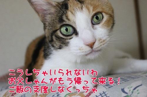 IMG_8181編集②.jpg