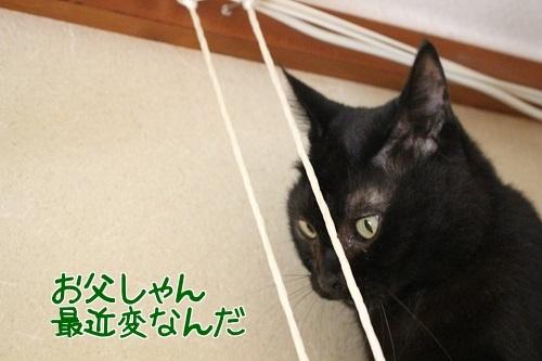 IMG_8308編集②.jpg