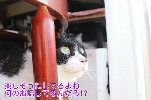 IMG_8393編集②.jpg