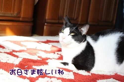 IMG_9055編集②.jpg