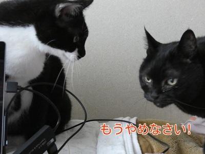 P1050393編集②.jpg