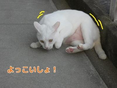 P1060139編集②.jpg