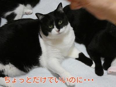P1060945編集②.jpg