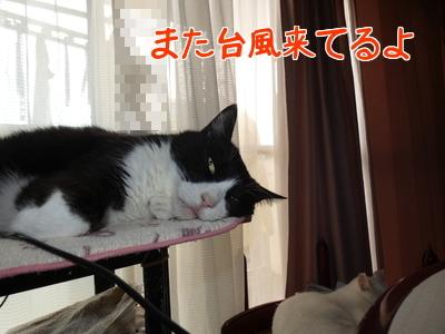 P1070643編集②.jpg