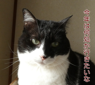 P1080479編集②.jpg
