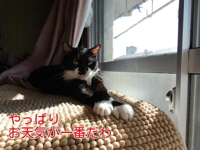 P1080804編集②.jpg