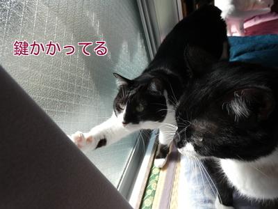 P1090006編集②.jpg