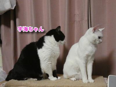 P1110097編集②.jpg