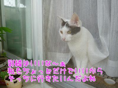 P1200626編集②.jpg