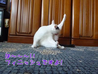 P1220467編集②.jpg