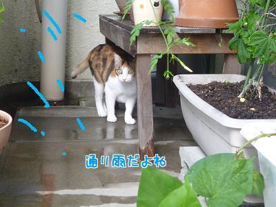 P1240647編集②-1.jpg