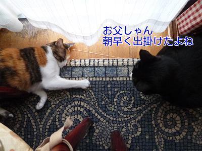 P1270530編集②.jpg