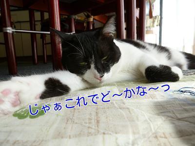 P1280124編集②.jpg