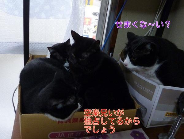 P1300414編集②.jpg
