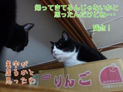 P1340838編集②.jpg