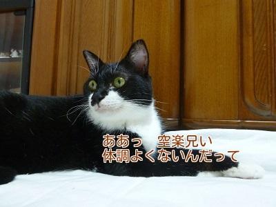 P1350710編集②.jpg