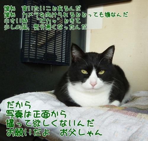 P1420135編集②.jpg