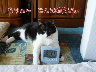 P1450100編集②.jpg