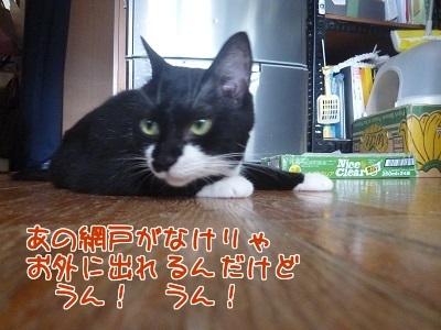 P1470332編集②.jpg