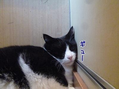 P1480344編集②.jpg