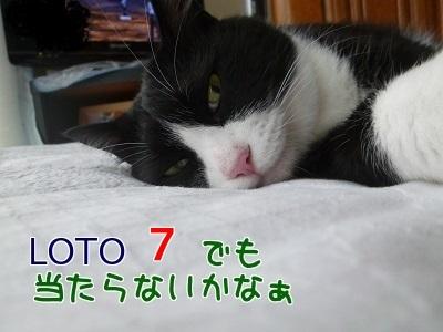 P1480479編集②.jpg