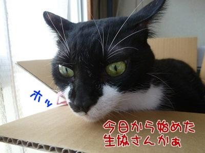 P1490967編集②.jpg