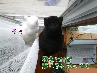 P1500108編集②.jpg