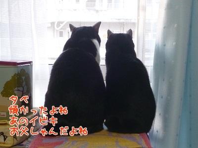 P1500996編集②.jpg