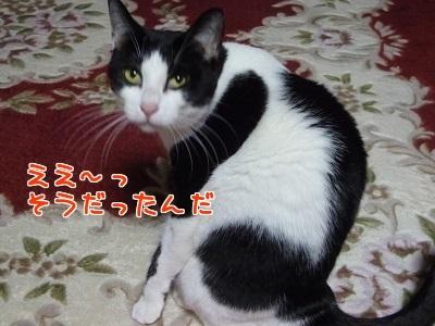 P1530278編集②.jpg