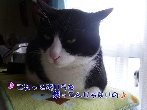 P1530627編集②.jpg