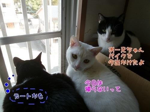 P1540193編集②-1.jpg