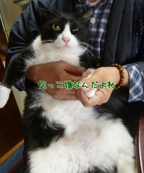 P1540414編集②.jpg