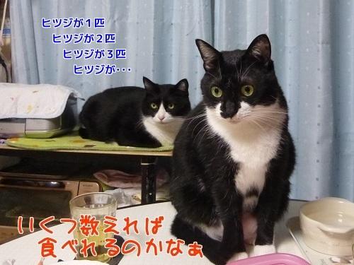 P1540793編集②.jpg