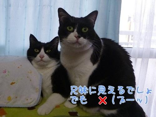 P1540856編集②.jpg