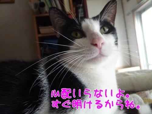 P1570267編集②.jpg
