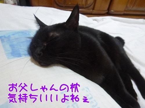 P1570324編集②.jpg
