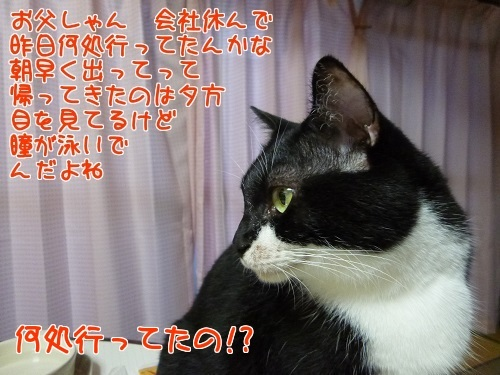 P1580500編集②.jpg