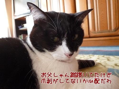P1600542編集②.jpg