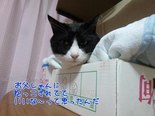 P1610252編集②.jpg